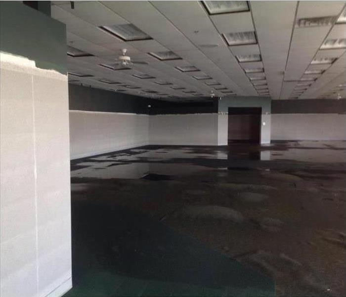 Commercial Water and Fire Loss in Lansing