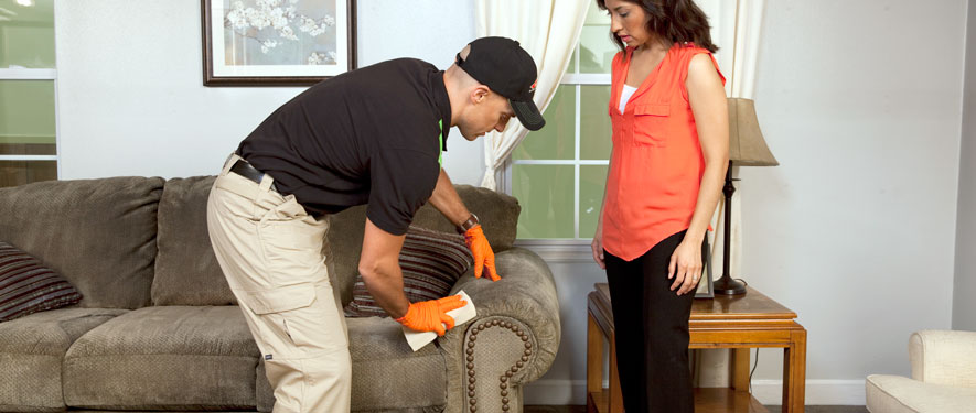 Lansing, MI carpet upholstery cleaning